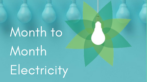 Month to Month Electricity