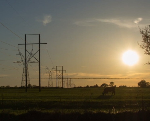 Texas Electricity in the year 2020