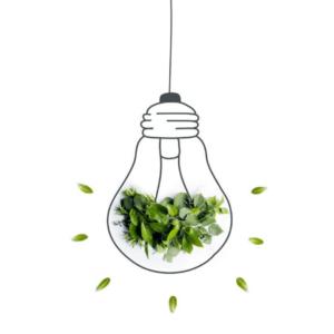 Green Electricity - Texas